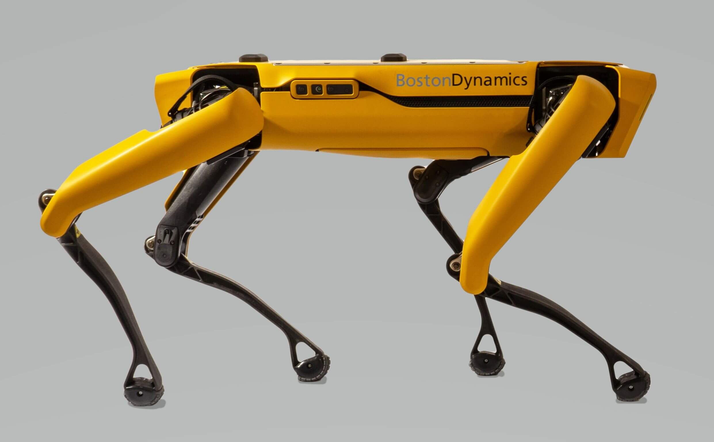 Spot, perro robot de Boston Dynamics